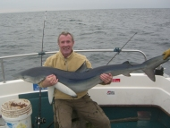 Blue Shark fishing in the Bristol Channel