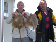 Spotted Ray fishing in the Bristol Channel
