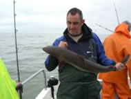 Spurdog fishing in the Bristol Channel