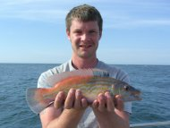Wrasse fishing in the Bristol Channel